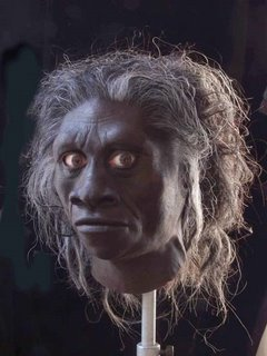 Reconstruction of Homo floresiensis head