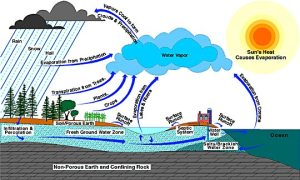 hyrdrological cycle or rain cycle