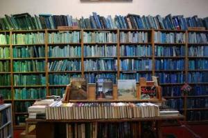blue-green and blue shelves