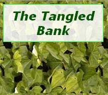 logo for Tangled Bank