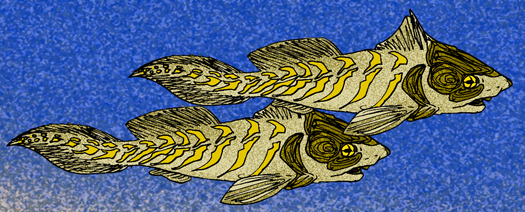 Two prehistoric fish swimming